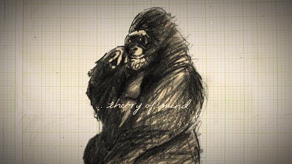 Meet Koko the Gorilla